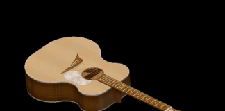 solidworks guitar