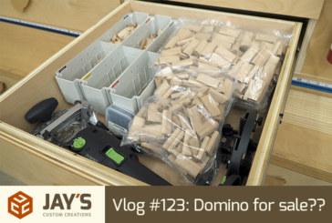 Vlog #123: Domino for sale??